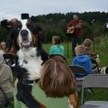 Blessing of the Animals October 6, 2019 at 4 pm