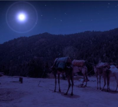 Star with 3 camels