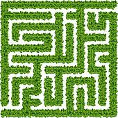 Youth Group Corn Maze